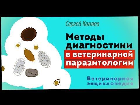 Методы диагностики «новых» заболеваний в ветеринарной паразитологии