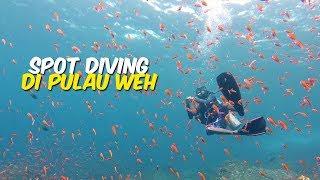 5 Spot Diving dengan Pemandangan Bawah Laut yang Menakjubkan di Pulau Weh, Ada Bekas Kapal Karam