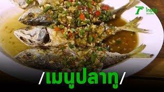 ตะลอนกิน ร้านครัวปลาทู ทิดอ้วน  | 08-11-62 | ตะลอนข่าว