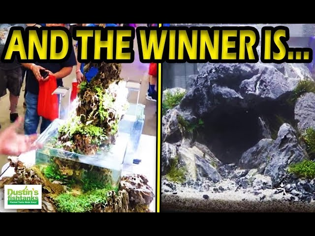 Aquascaping Contest, The WINNING Aquascaper is...