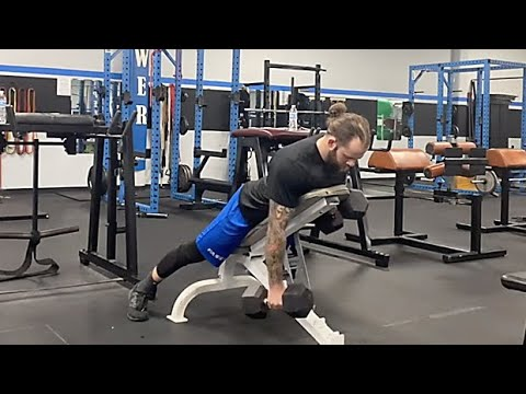 Dumbbell Opposite Iso Chest-Supported Row