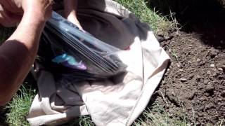 Burying my cat