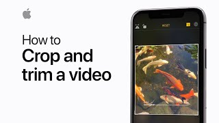 How to crop and trim a video on your iPhone or iPad — Apple Support
