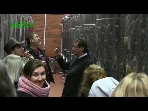 Výlet do HR Winery