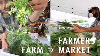 From FARM To FARMERS MARKET