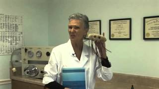 Parasites and Worms - Cathy Shea School