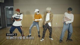 WINNER - 'REALLY REALLY' DANCE TUTORIAL