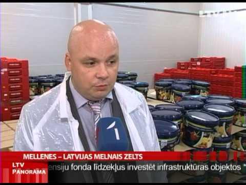 Prostatas vēzis infekcija