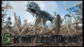 Ragnarok | FIVE Ice Wyvern NEST Locations