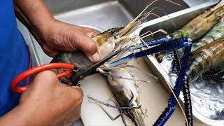 Thai Food - GIANT RIVER PRAWNS Spicy Seafood Stew Aoywaan Bangkok Thailand