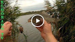 Рыбалка на соленом озере в батайске