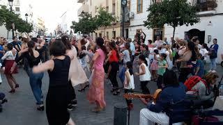Flamenco de Geneve à Jerez