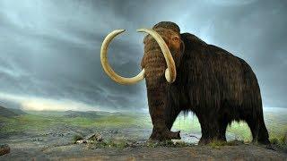 Skyrim Mods: Summon Mammoths (PC/XBOX1/PS4)