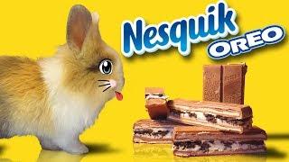 Кролик БАФФИ и OREO NESQUIK Giant Chocolate Candy! Слишком много конфет для Баффи ШОКОЛАДКА для БАФИ