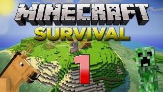 Minecraft Xbox: Survival Lets Play - Part 1 [XBOX 360 EDITION] A NEW SERIES - W/Commentary