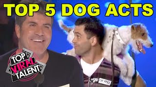 TOP 5 DOG AUDITIONS ON GOT TALENT!!!