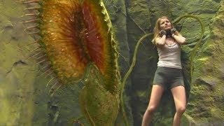 女孩跌入无底深渊,遭遇巨型食人花,即将成为它的食物!速看科幻电影《地心历险记》