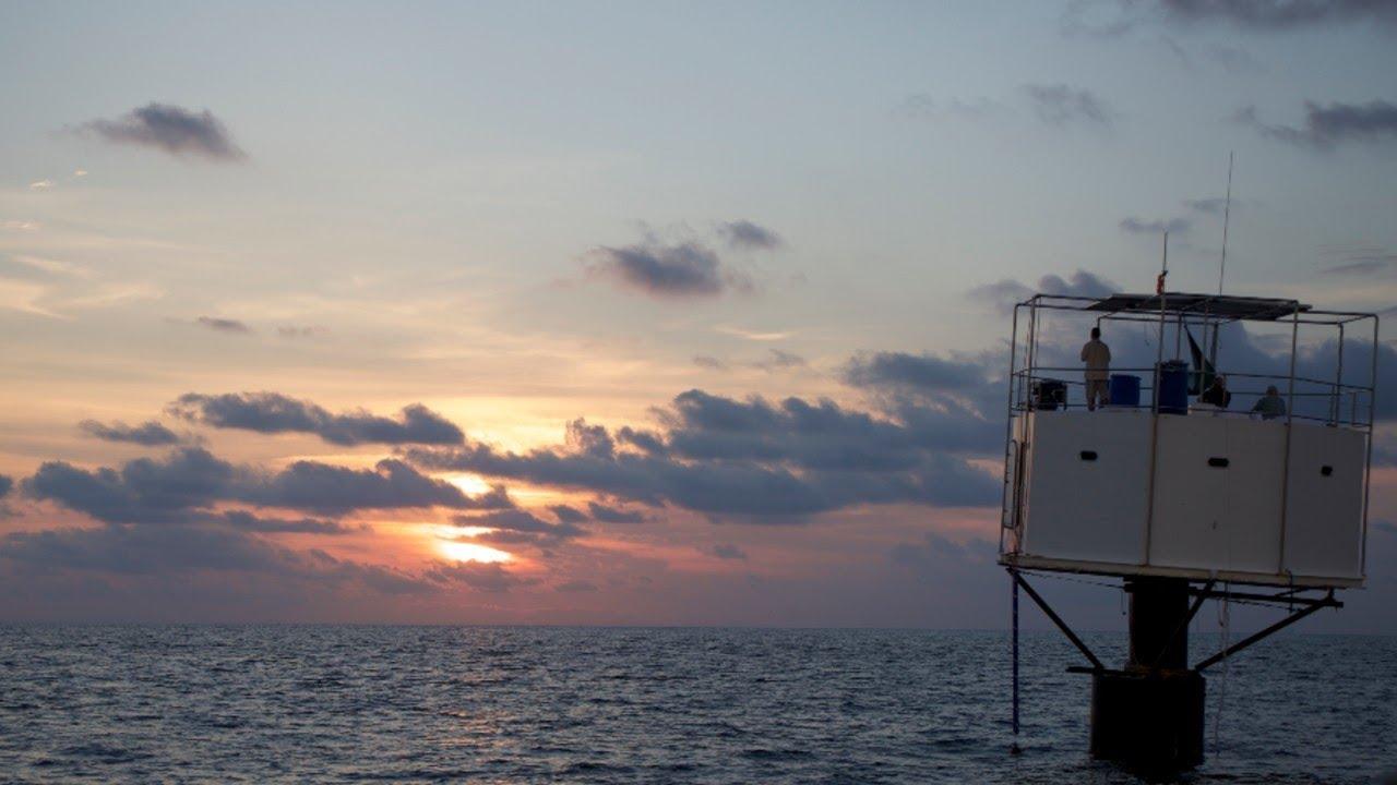 www.seasteading.org