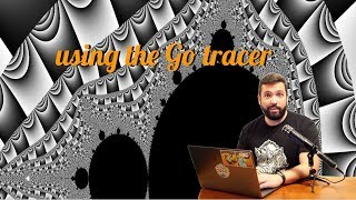 Justforfunc #22: Using The Go Execution Tracer