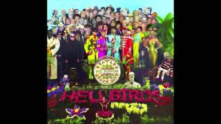 Strawberry Fields meets Good Vibrations  (Strawberry Vibrations - Beatles/ Beach Boys Medley Mashup)