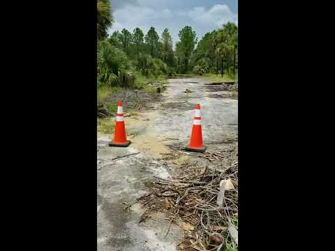 Illegal Dumping, Davenport, Polk County, Fl Mp3