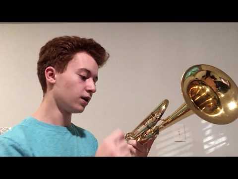 "Yamaha YTR-8310Z Custom ""Bobby Shew"" Trumpet Review"