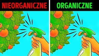 Organiczna żywność: samo zdrowie, czy wielki mit?