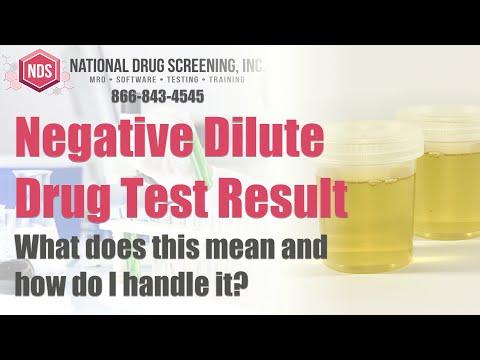 Negative Dilute Drug Test >> The Negative Dilute Drug Test Result