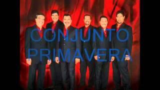 CONJUNTO PRIMAVERA - AMIGO MESERO ( CON DEDICACION ESPECIAL )