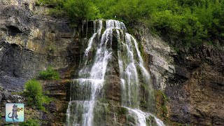 2 HOURS of Relaxing Forest Waterfall ~ Beautiful Nature Sounds for Sleep, Study & Yoga