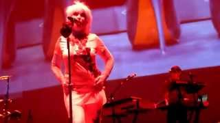 Blondie A rose by any Name