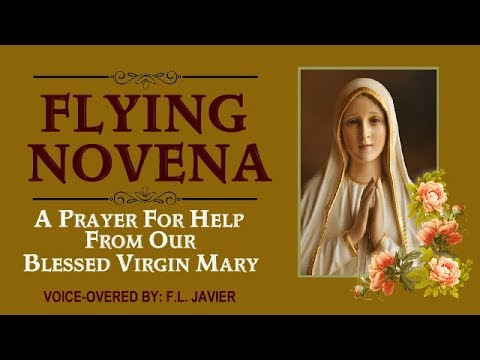 FLYING NOVENA - A PRAYER FOR HELP FROM OUR BLESSED VIRGIN MARY