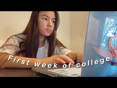 First week of online classes (computer science major)