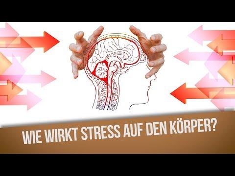 Wie wirkt Stress auf den Körper?