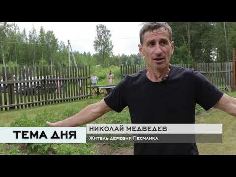 Тема дня 29.06.2020 / Скотный двор в Песчанке