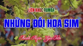 lien-khuc-rumba-nhung-doi-hoa-sim-tuyet-dinh-nhac-song-tru-tinh-thanh-ngan-gia-tien-moi-det-2020