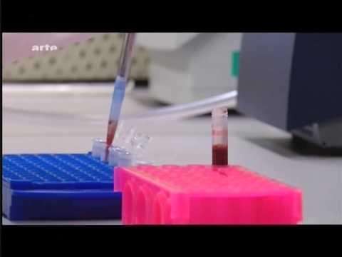 Der gute Arzt tricholog in moskwe die Rezensionen