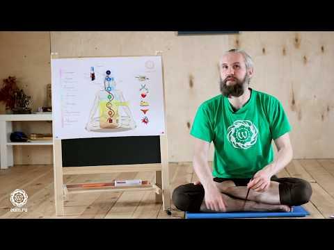 Как самостоятельно практиковать йогу