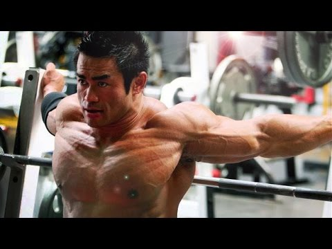 Chaque muscle tire pour lui-même
