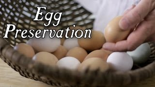 The Top 6 Historical Egg Preservation Techniques!