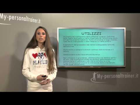 Analoghi russi prezzo Prostamol
