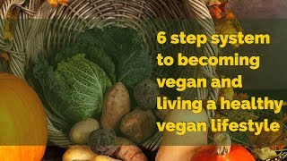 6 step system to becoming vegan and living a healthy vegan lifestyle