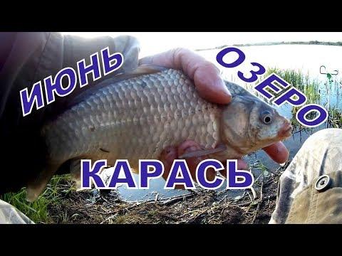 Riposi e pescando in Novgorod regionale