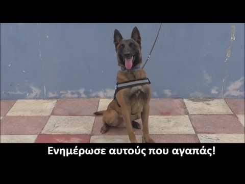 Το βίντεο της ΕΛ.ΑΣ. για την παγκόσμια ημέρα κατά των ναρκωτικών