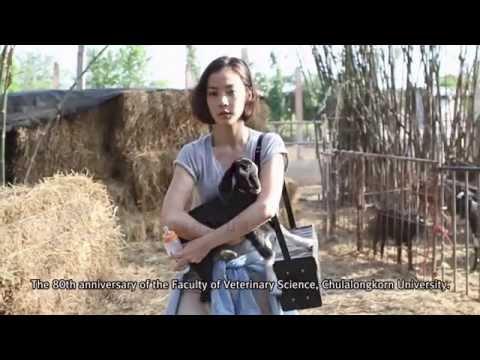 เชื้อโรคหญิงในผลวิดีโอ