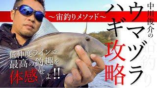 【船釣り】中川俊介のウマヅラハギ攻略〜宙釣りメソッド〜