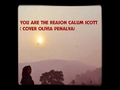 download calum scott you are the reason cover olivia penalva