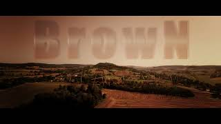 DJI FPV flight over the wheat fields 4K