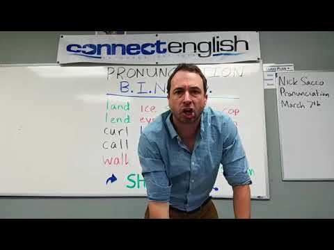 Connect English Pronunciation BINGO, Volume 4 - La Jolla Campus