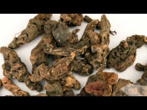 A prosztatagyulladás hidroterápiája